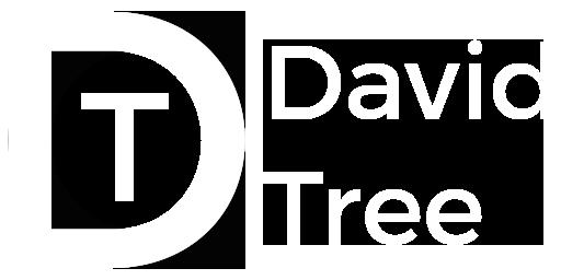 David Tree